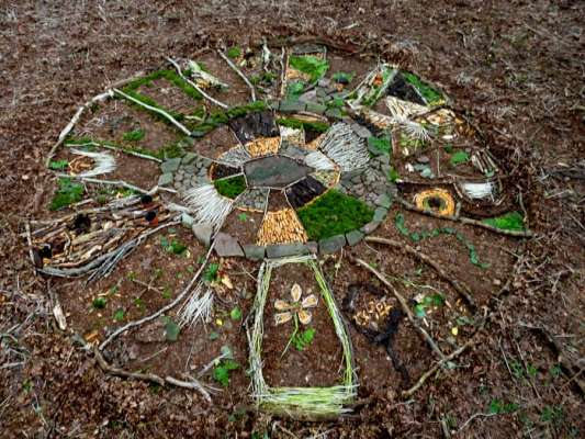 The final circular drawing, 15ft diameter, found woodland materials