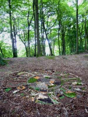 drawing in the woods, 15ft diameter