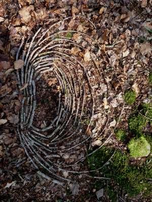 Footprint made using fallen twigs, c.1ft x 0.5ft, founf fallen twigs