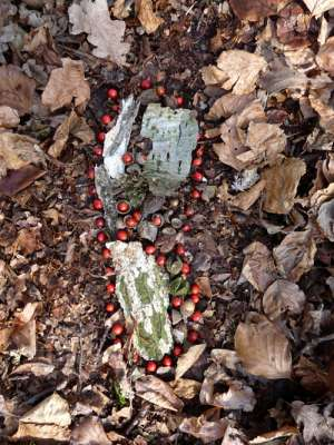 footprint made using berries and bark, c.1ft x 0.5ft